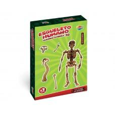 Quebra-cabeça 3D Esqueleto Humano